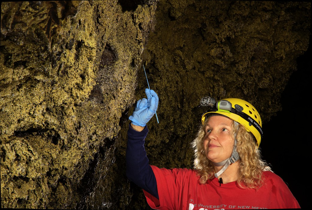 Diana Northup doing microbial sampling in a cave